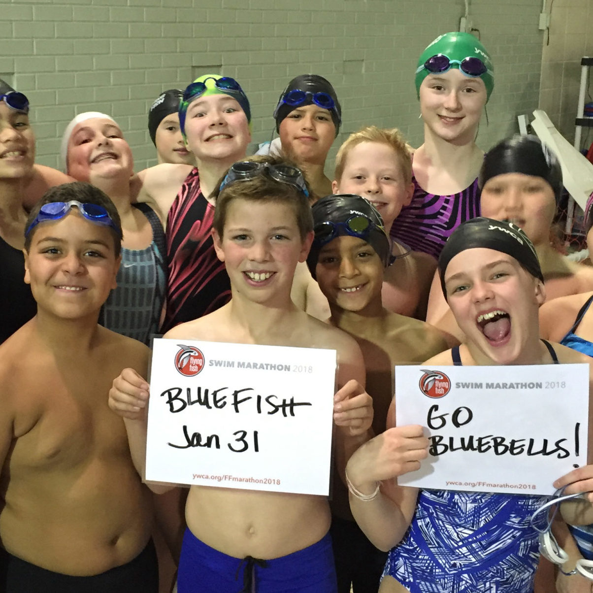 Bluefish swimmers
