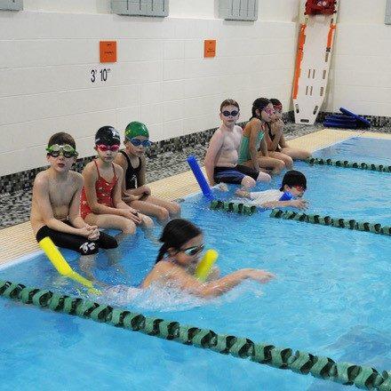 FF swimming